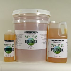 bacterius_equinox-1