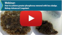 Rare Earth Coagulant Webinar
